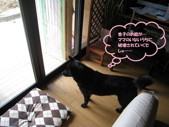 0521blog2.jpg