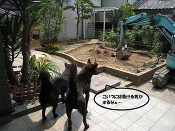 0521blog3.jpg